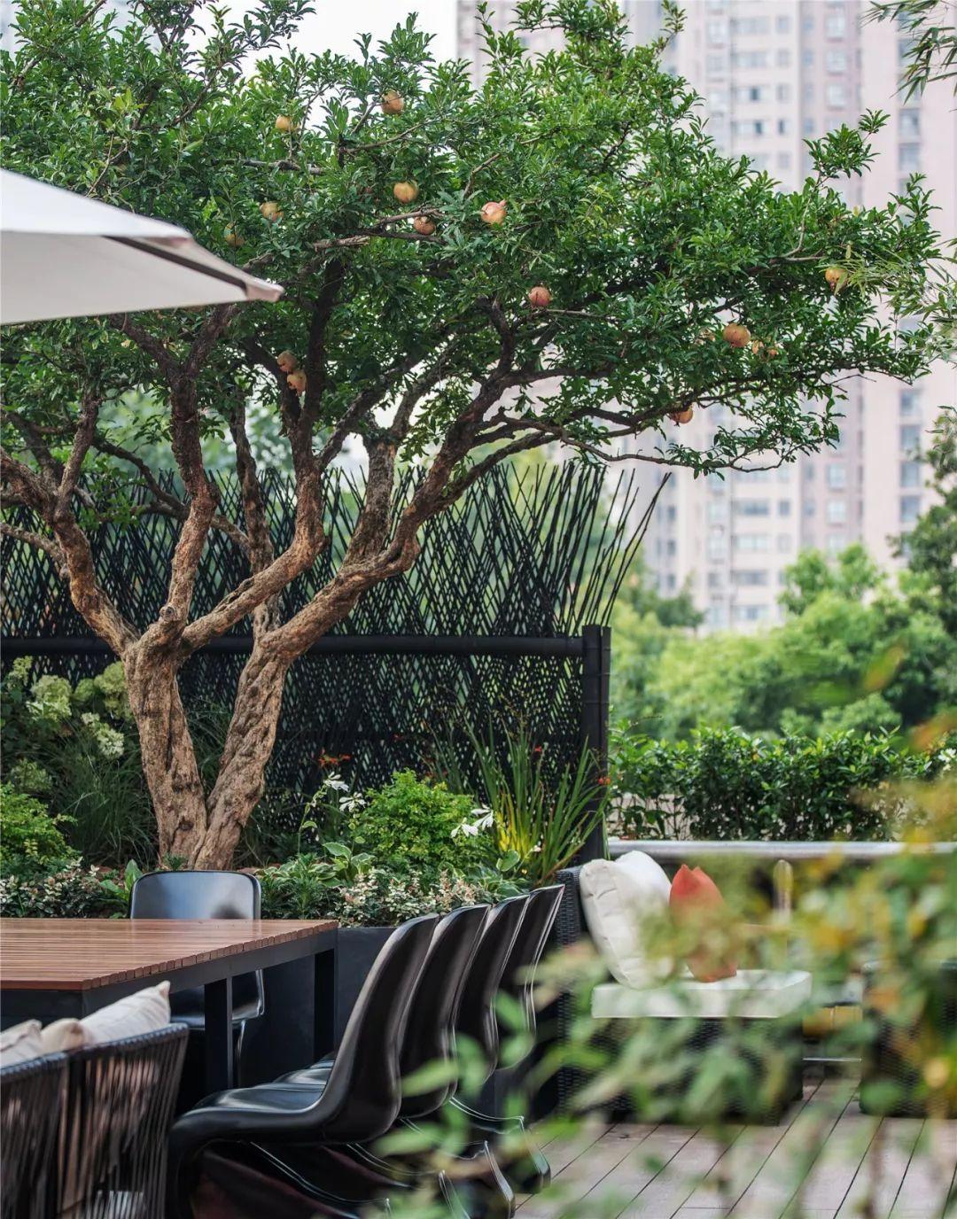 上海地标性餐厅,惊艳众人!  曾建龙新作