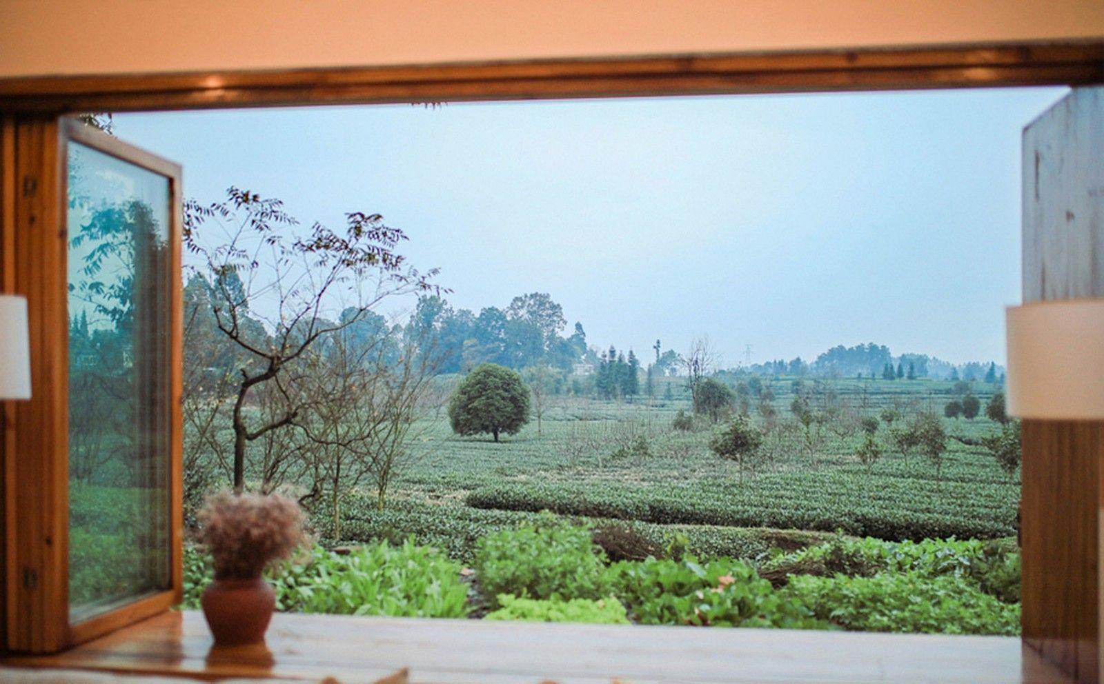 记忆里的悠悠茶香·四川-小茶院 | 使然设计|使然设计 - 9