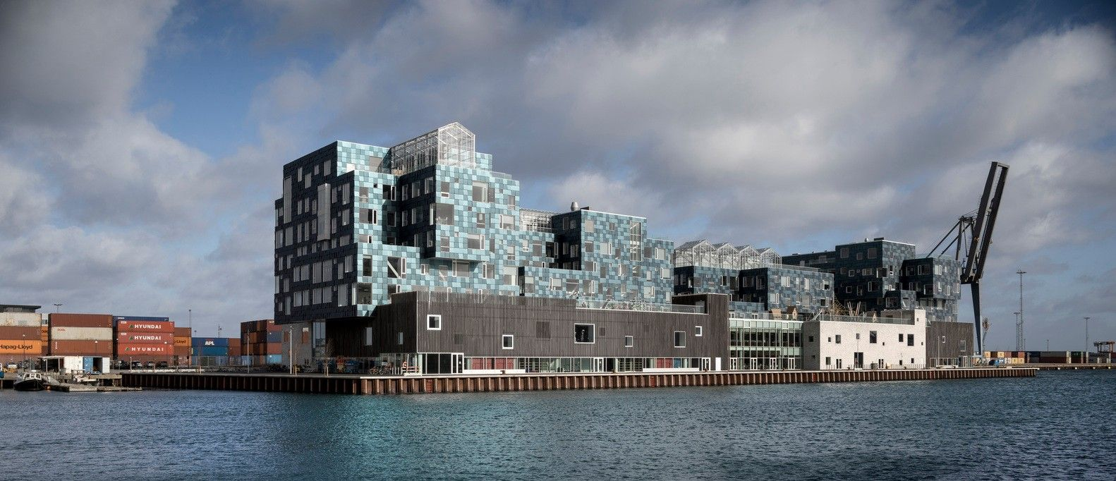 CIS Nordhavn国际学标设计