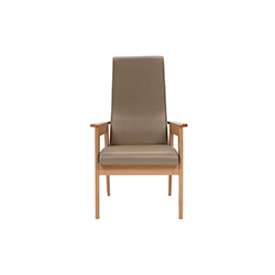Danesa 扶手椅 danesa armchair JM 马萨纳 JM Massana
