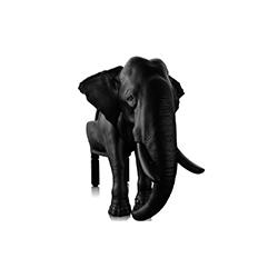 大象椅 Elephant  Chair 马克西姆·里埃拉 Maximo Riera