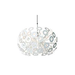 理查德·霍顿 Richard Hutten| 蒲公英吊灯 dandelion pendant lamp