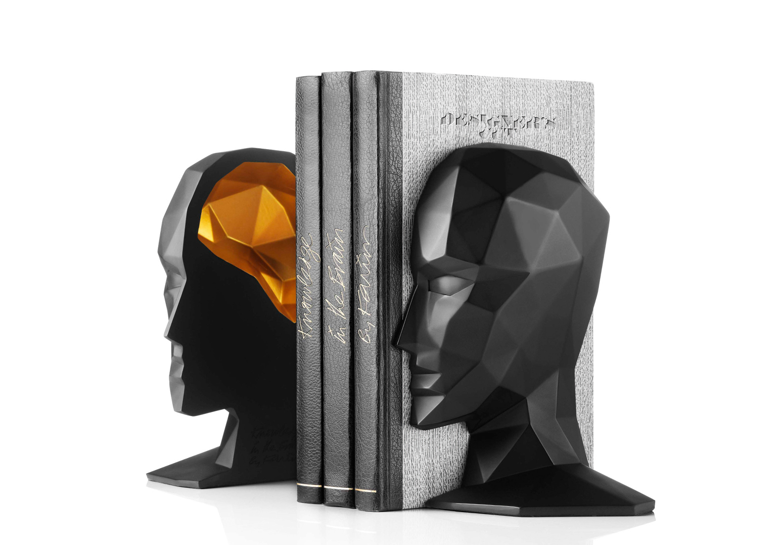 大脑中的知识书档
