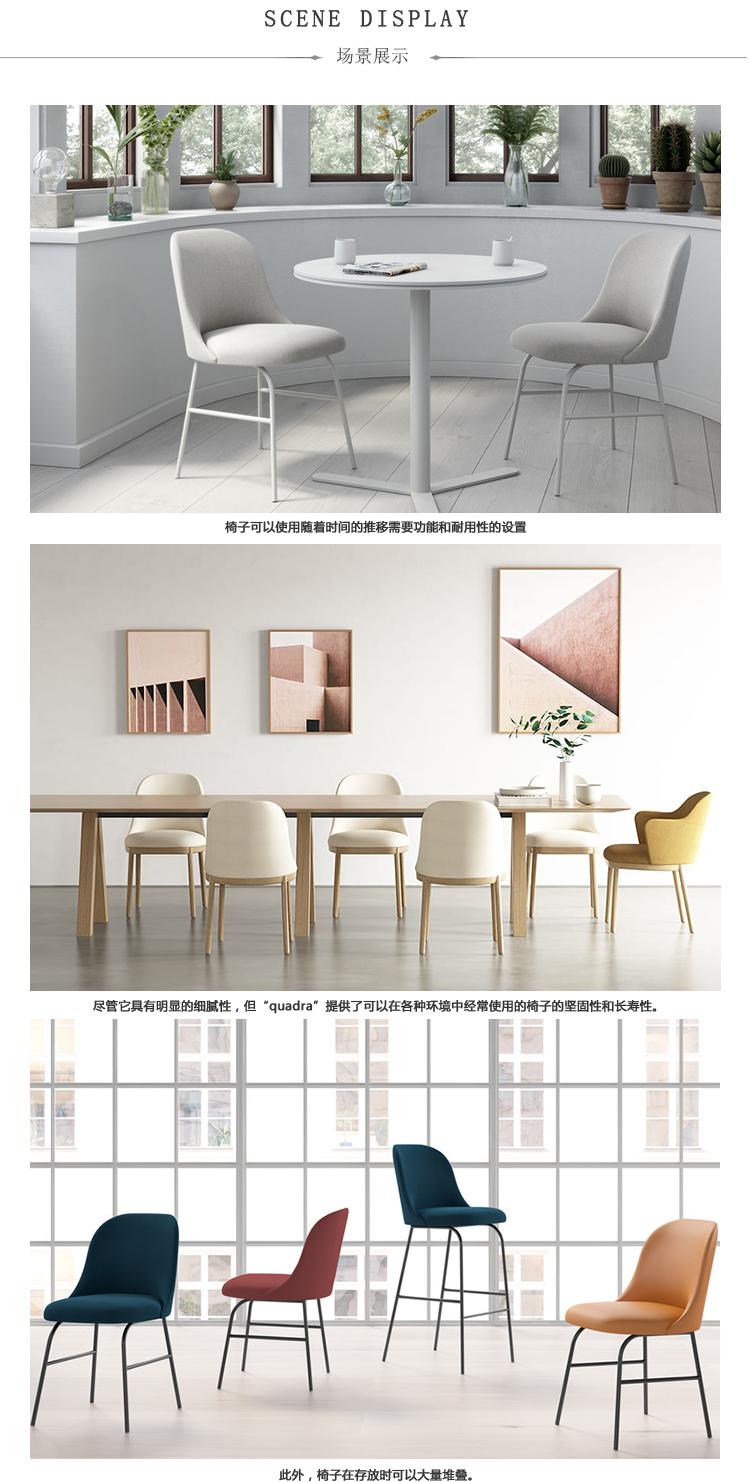 ALETA  餐椅/洽谈椅、aleta  dining chair、B2005产品详情